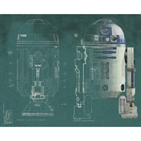 Star Wars TM R2-D2 Pre-Pasted Mural