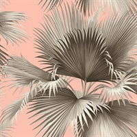 Summer Palm Blush Tropical Wallpaper