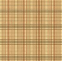 Earthtone Plaid