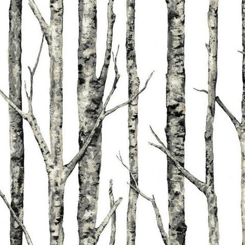 Eco chic wallpaper birch trees - wiki chinese dwarf hamster pictures