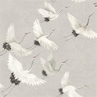 Windsong Grey Bird Wallpaper